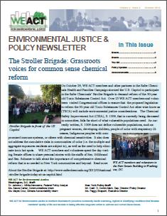 EJ and Policy Newsletter - Volume 2 Issue 3 (October 2013)